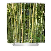 Lucky Bamboo Shower Curtain