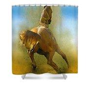 Lucky Luke Shower Curtain