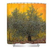 L'ulivo Tra Le Vigne Shower Curtain