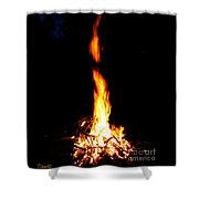 Lumiere Shower Curtain