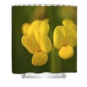 Lumin Shower Curtain