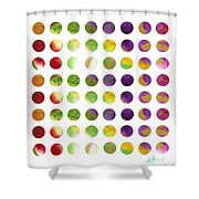Lunar Phases Shower Curtain