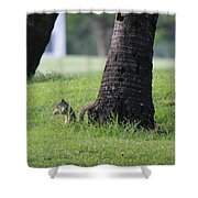 Lunch Time? Shower Curtain
