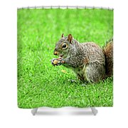Lunchtime In The Park Shower Curtain