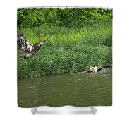 Lunchtime On The River Shower Curtain