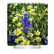 Lupine Amidst Tidy Tips Shower Curtain