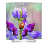 Lupine And Friends Shower Curtain