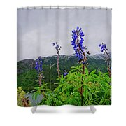 Lupine And Mountains Shower Curtain