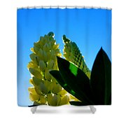 Lupine Camelot-1 Shower Curtain