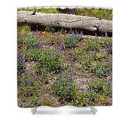 Lupines And A Log Shower Curtain
