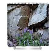 Lupines And Rock Face Shower Curtain