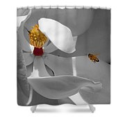 Lure Shower Curtain