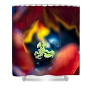 Luscious Kaleidoscope Shower Curtain