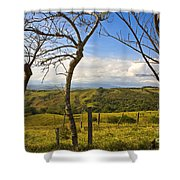 Lush Land Leafless Trees I Shower Curtain