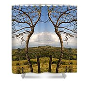 Lush Land Leafless Trees IIi Shower Curtain