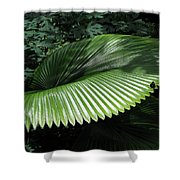 Lush Landing Shower Curtain