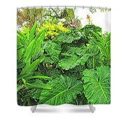 Lust Too Shower Curtain