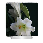 Lustrous Lilies Shower Curtain