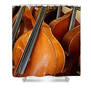 Luthier 4 Shower Curtain