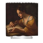 Luti, Benedetto Attributed To Saint Catherine Second Half Of The Xvii - Primer Cuarto Del Siglo Xv Shower Curtain