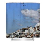 Luxury Beach Houses Malibu Shower Curtain