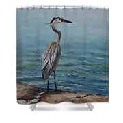Lydia Ann Lookout Shower Curtain