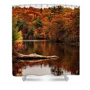 Lynn Woods Birch Pond Fall Colors Shower Curtain