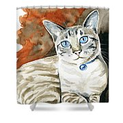 Lynx Point Siamese Cat Painting Shower Curtain