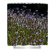 Lyre Leaf Sage Shower Curtain