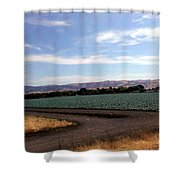 ,m Shower Curtain