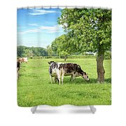 Ma Normandie Shower Curtain