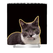Mac Attack 2-custom Order Shower Curtain