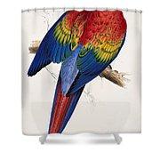 Macaw By_edward_lear Shower Curtain