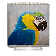 Macaw Head Shower Curtain
