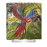 Macaw Parrot 3 Shower Curtain