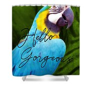 Macaw Quote Shower Curtain
