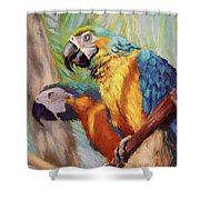 Macaws In The Sunshine Shower Curtain
