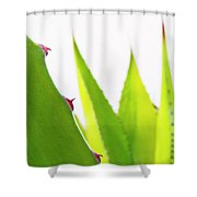 Mack The Knife 2 Shower Curtain