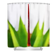 Mack The Knife 3 Shower Curtain