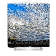 Mackerel Sky Shower Curtain