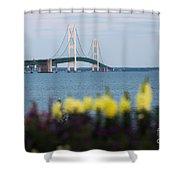 Mackinac Bridge 2 Shower Curtain