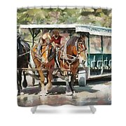 Mackinac Island Transportation - Surrey With The Fringe On Top Shower Curtain