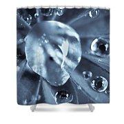Macro - Water Drops Shower Curtain