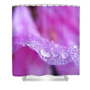 Macro Art - Primary Focus Shower Curtain