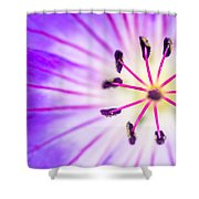 Macro Closeup Of A Purple Flower Stamen Shower Curtain