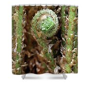 Macro Fern Sprout Shower Curtain