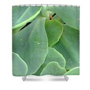 Macro Green Shower Curtain