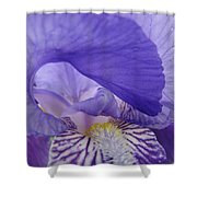 Macro Irises Close Up Purple Iris Flowers Giclee Art Prints Baslee Troutman Shower Curtain