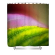 Macro Leaf Shower Curtain