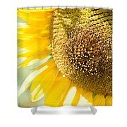 Macro Photography Of Sunflower Shower Curtain
